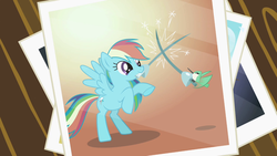 Size: 1280x720 | Tagged: safe, screencap, rainbow dash, bird, hummingbird, pegasus, pony, may the best pet win, epee, female, fencing, hilarious in hindsight, mare, mouth hold, photo