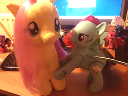 Size: 500x375   Tagged: safe, fluttershy, rainbow dash, build-a-bear, colored wings, fat angry rainbow dash, irl, multicolored wings, photo, plushie, rainbow power, rainbow wings, toy