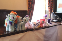 Size: 5184x3456 | Tagged: artist:poshpete117, crocus armoura, irl, lyra heartstrings, photo, pinkie pie, plushie, rainbow dash, rarity, safe, scootaloo, twilight sparkle