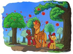 Size: 945x699 | Tagged: safe, artist:idrawweeklypony, apple bloom, applejack, big macintosh, alicorn, pony, alicornified, apple, applecorn, magic, race swap, telekinesis, tree