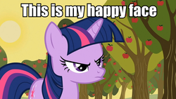 Size: 959x540 | Tagged: edit, edited screencap, happy face, image macro, meme, pouting, safe, screencap, solo, twilight sparkle