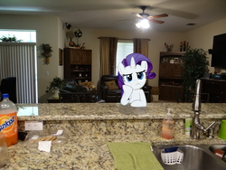 Size: 4896x3672   Tagged: safe, artist:emedina13, rarity, bored, ceiling fan, chair, cookie, curtains, dishes, irl, lights, photo, pillow, plants, ponies in real life, room, sink, soap, soda, solo, television, towel, vector