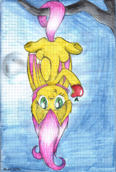 Size: 1024x1515 | Tagged: safe, artist:lillyflover, fluttershy, bat pony, pony, flutterbat, graph paper, race swap, solo, traditional art