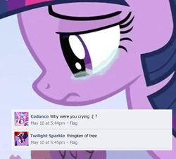 Size: 500x453 | Tagged: alicorn, comments, crying, facebook, female, golden oaks library, mare, meme, parody, pony, princess cadance, safe, save tree, thingken of life, twilight's kingdom, twilight sparkle, twilight sparkle (alicorn)