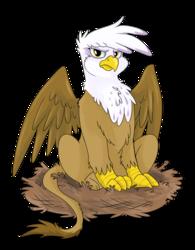 Size: 624x800 | Tagged: safe, artist:spainfischer, gilda, griffon, angry, behaving like a bird, birds doing bird things, catbird, female, griffons doing bird things, nest, nesting instinct, solo
