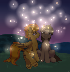 Size: 1500x1540 | Tagged: safe, artist:ratofdrawn, spitfire, oc, oc:chocolate chips, earth pony, firefly (insect), pegasus, pony, canon x oc, clover, cute, female, firechips, four leaf clover, frog (hoof), hooves, looking up, love, male, mare, night, shipping, side, sitting, smiling, stallion, straight, underhoof