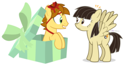 Size: 1050x550 | Tagged: safe, artist:dm29, wild fire, oc, oc:mandopony, birthday, bow, eye contact, female, frown, grin, male, mandofire, present, ribbon, shipping, sibsy, simple background, smiling, spread wings, straight, surprised, transparent background, wide eyes, wingboner