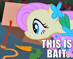 Size: 600x480   Tagged: safe, edit, edited screencap, screencap, fluttershy, pegasus, pony, the best night ever, bait, box, caption, carrot, clothes, cropped, cute, dress, eyes on the prize, female, flower, gala dress, happy, image macro, mare, meme, reaction image, rope, rose, shyabetes, smiling, solo, stick, text, this is bait