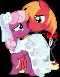 Size: 2620x3370   Tagged: safe, artist:benybing, big macintosh, cheerilee, earth pony, pony, blushing, cheerimac, clothes, dress, male, shipping, stallion, straight, tuxedo, wedding, wedding dress, wedding ring