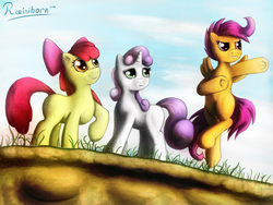 Size: 2048x1536 | Tagged: apple bloom, artist:rainihorn, cutie mark crusaders, safe, scootaloo, sweetie belle