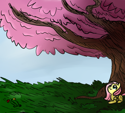 Size: 1100x1000 | Tagged: safe, artist:rustydooks, artist:tess, fluttershy, colored, female, flower, grass, looking up, prone, smiling, solo, tree, wind