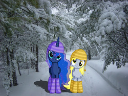 Size: 1280x960 | Tagged: safe, artist:austiniousi, artist:tokkazutara1164, derpy hooves, princess luna, pegasus, pony, boots, cap, female, hat, irl, mare, pathway, photo, ponies in real life, shadow, snow, tree, vector