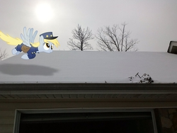 Size: 2592x1944 | Tagged: safe, artist:mahaugher, artist:tokkazutara1164, derpy hooves, pegasus, pony, cap, female, flying, hat, irl, mailpony, mare, photo, ponies in real life, snow, solo, vector