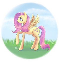 Size: 900x945 | Tagged: safe, artist:avenk, fluttershy, pegasus, pony, cloud, female, grass, mare, profile, raised hoof, simple background, sky, solo, transparent background