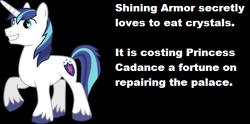 Size: 504x250 | Tagged: safe, princess cadance, shining armor, headcanon, pica, solo, text