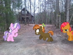 Size: 2592x1944 | Tagged: angry, artist:lahirien, artist:liggliluff, artist:tokkazutara1164, artist:tzolkine, babs seed, button mash, buttonseed, cabin, cabin in the woods, crying, diamond tiara, forest, laughing, leaves, oc, photo, ponies in real life, safe, shipping, vector