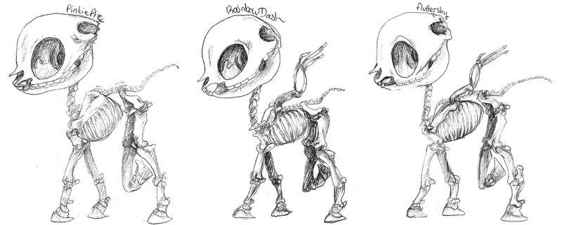 699321 - anatomy, artist:blitzcattbabe, fluttershy, monochrome ...