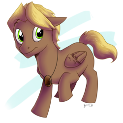 Size: 582x578 | Tagged: abstract background, artist:theziminvader, male, oc, oc:macchiato, oc only, pegasus, pendant, pony, safe, solo