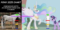 Size: 885x446   Tagged: safe, princess celestia, twilight sparkle, horse, human, /mlp/, 4chan, comic sans, comparison, height, hoers, irl, photo, size chart, size comparison