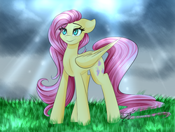 Size: 1024x768 | Tagged: safe, artist:sugarberry, fluttershy, female, floppy ears, solo