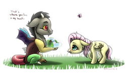 Size: 1280x802 | Tagged: safe, artist:arceus55, discord, fluttershy, butterfly, draconequus, pegasus, pony, blank flank, cheek fluff, cute, daaaaaaaaaaaw, dialogue, discute, duo, duo male and female, female, filly, filly fluttershy, floppy ears, foal, grass, looking at each other, male, profile, shy, shyabetes, signature, simple background, waterfall, white background, wings, young discord, younger