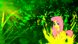 Size: 1920x1080 | Tagged: artist:sgtwaflez, female, fluttershy, mare, pegasus, pony, safe, solo, wallpaper