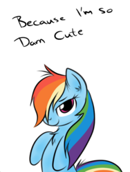 Size: 480x640   Tagged: artist needed, safe, rainbow dash, pegasus, pony, alternate hairstyle, bedroom eyes, bipedal, chest fluff, cute, dashabetes, ear fluff, fact, female, fluffy, lidded eyes, looking at you, mare, messy mane, simple background, solo, text, transparent background, truth
