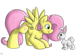 Size: 1231x888 | Tagged: safe, artist:luximus17, fluttershy, pegasus, pony, rabbit, chest fluff, duo, female, looking at each other, looking at someone, looking down, mare, profile, simple background, smiling, spread wings, standing, white background, wings