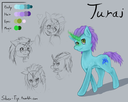 Size: 1280x1024 | Tagged: safe, artist:silver-tip, oc, oc only, oc:turai, pony, unicorn, 2014, facial expressions, magic, poison joke, pose, reference sheet, solo