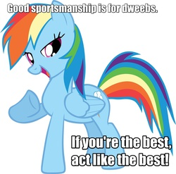 Size: 1600x1581 | Tagged: safe, edit, rainbow dash, advice, cocky, image macro, meme, mouthpiece, solo, text edit