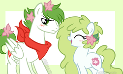 Size: 1024x615 | Tagged: safe, artist:xwhitedreamsx, oc, oc:gracidea, pony, shaymin, female, flower, flower in hair, male, mare, pokémon, ponified, stallion