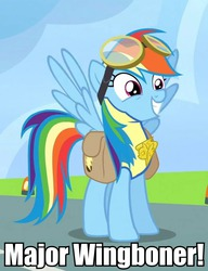 Size: 546x711 | Tagged: safe, edit, edited screencap, screencap, rainbow dash, pegasus, pony, wonderbolts academy, badge, clothes, cropped, female, goggles, grin, image macro, mare, meme, saddle bag, smiling, solo, spread wings, squee, uniform, wingboner, wings, wonderbolt trainee uniform, wonderbolts, wonderbolts uniform