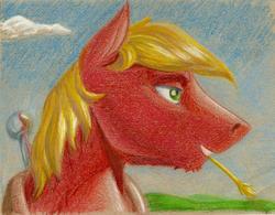 Size: 1140x888   Tagged: safe, artist:skybounddeos, big macintosh, earth pony, pony, male, solo, stallion, traditional art
