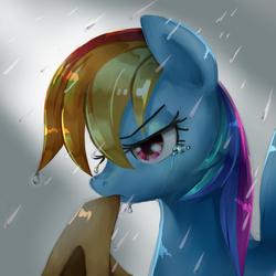 Size: 2048x2048   Tagged: safe, artist:iron age, rainbow dash, applejack's hat, female, hat, mouth hold, rain, solo, wet, wet mane