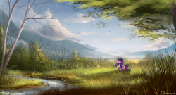 Size: 2220x1200 | Tagged: dead source, safe, artist:shamanguli, twilight sparkle, alicorn, bird, pony, cloud, cloudy, creek, eyes closed, female, forest, grass, mare, mountain, river, scenery, scenery porn, solo, stream, tree, twilight sparkle (alicorn), water