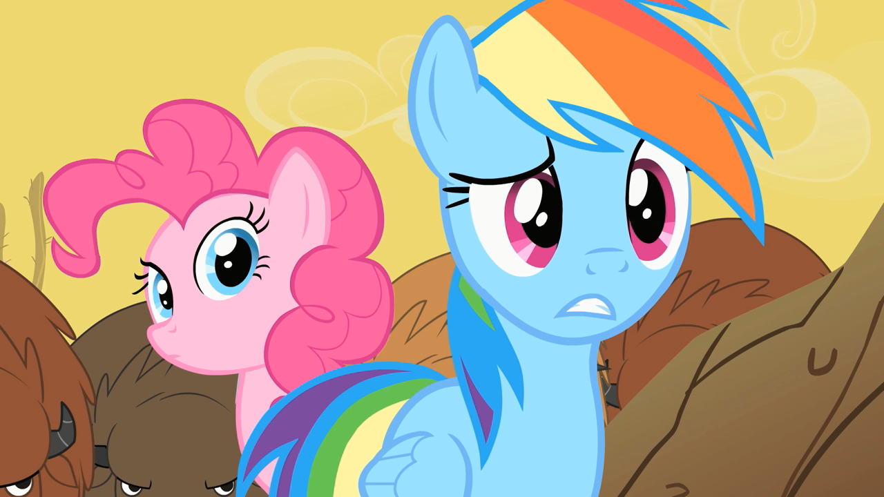 1007420 Confused Over A Barrel Pinkie Pie Rainbow Dash Safe