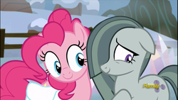 Size: 1920x1080   Tagged: safe, screencap, marble pie, pinkie pie, earth pony, pony, hearthbreakers, cute, diapinkes, female, floppy ears, marblebetes, mare, pie twins, raised hoof, saddle bag, sisters, twins