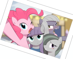 Size: 1282x1048   Tagged: safe, artist:30clock, limestone pie, marble pie, maud pie, pinkie pie, earth pony, pony, female, mare, open mouth, pie sisters, pie twins, selfie, siblings, sisters, smiling, sweat, twins