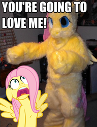 Size: 618x808 | Tagged: safe, fluttershy, human, clothes, cosplay, costume, image macro, irl, irl human, irony, meme, photo, ponysuit, you're going to love me