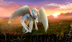 Size: 1300x760   Tagged: safe, artist:skyeypony, oc, oc only, oc:morning dew, cloud, cloudy, crepuscular rays, featureless crotch, flower, grass, lens flare, looking back, meadow, mountain, scenery, scenery porn, sky, solo, spread wings, sunset