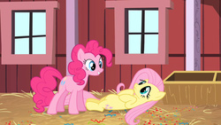 Size: 1280x720 | Tagged: barn, belly, cute, eye contact, fluttershy, frown, grin, hay, on back, out of context, pinkie pie, safe, screencap, smiling, surprise party, sweet apple acres, the last roundup
