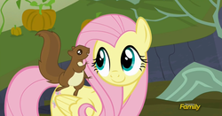 Size: 1361x711   Tagged: safe, screencap, fluttershy, squirrel, the hooffields and mccolts, cute, discovery family logo