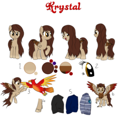 Size: 908x879 | Tagged: safe, artist:karmadash, oc, oc only, oc:krystal feathers, bird, classical hippogriff, hippogriff, pegasus, pony, clothes, pet, pet oc, reference sheet, solo