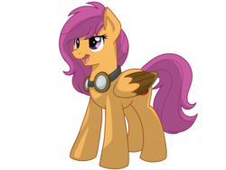 Size: 1024x768   Tagged: safe, artist:itstaylor-made, scootaloo, older, simple background, solo, transparent background, vector