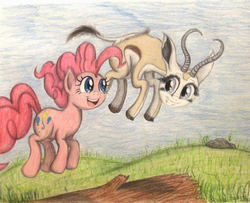 Size: 1280x1039 | Tagged: safe, artist:thefriendlyelephant, pinkie pie, oc, oc:mmiri, antelope, springbok, animal in mlp form, cloven hooves, duo, grass, hill, horns, log, pronking, rock, smiling, traditional art
