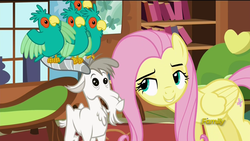 Size: 1920x1080 | Tagged: safe, screencap, fluttershy, bird, goat, parrot, pegasus, pony, popinjay, castle sweet castle, animal, female, flock, leaning forward, lidded eyes, mare, out of context, perching, spread wings, wings