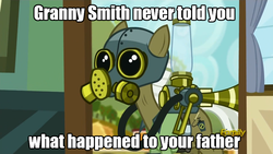 Size: 960x540 | Tagged: safe, edit, edited screencap, screencap, max raid, earth pony, pony, bloom and gloom, cropped, darth vader, image macro, male, meme, pest control pony, pest pony, reference, solo, star wars