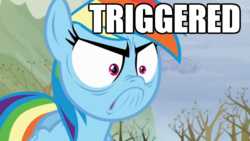 Size: 640x360 | Tagged: safe, screencap, rainbow dash, tanks for the memories, angry, do i look angry, female, image macro, meme, solo, triggered