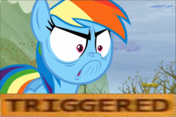 Size: 1366x911 | Tagged: safe, edit, edited screencap, screencap, rainbow dash, tanks for the memories, activism, angry, do i look angry, faic, female, frown, glare, nose wrinkle, solo, triggered, wide eyes