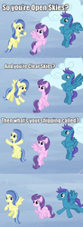 Size: 631x1709   Tagged: safe, clear skies, open skies, sunshower, pegasus, pony, tanks for the memories, comic, female, flying, male, mare, open clear skies, screencap comic, shipping, stallion, straight, trio